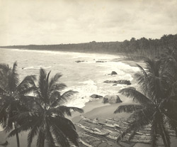Ceylon. Coast S. of Colombo